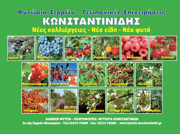 Φυτώρια Σερρών Κωνσταντινίδης
