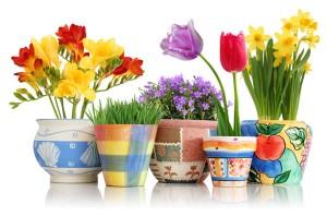 Διακόσμηση με pots