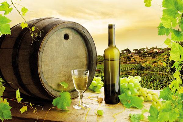 Εμφιάλωση & συντήρηση του κρασιού