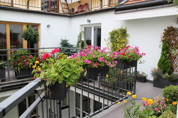 μικρός κήπος στο μπαλκόνι