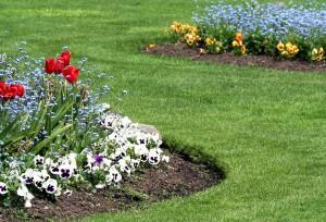 Βασικές αρχές & συμβουλές για έναν όμορφο κήπo