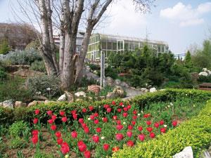 Βοτανικός κήπος Σταυρούπολης Θεσσαλονίκης