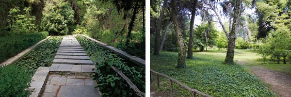 Διομήδειος Βοτανικός Κήπος