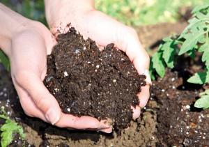 Compost: Διαδικασίες Κομποστοποίησης