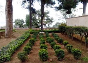 Τμήμα του κήπου της Αγίας Γραφής, του πρώτου παγκοσμίως σε Ορθόδοξο Μοναστήρι
