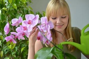 φωτισμός και φυτά εσωτερικού χώρου