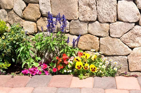 Φροντίδες στον κήπο και το λαχανόκηπο το Μάιο