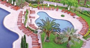 Φύτευση γύρω από την πισίνα