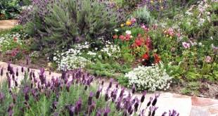Βασικές αρχές για τη βιολογική διαχείριση του κήπου