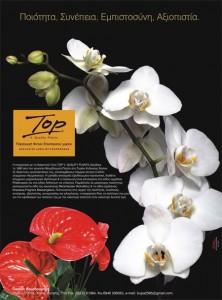 Top V. Quality Plants
