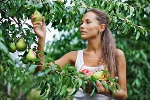 Προτάσεις φύτευσης για έναν «Εδώδιμο κήπο»