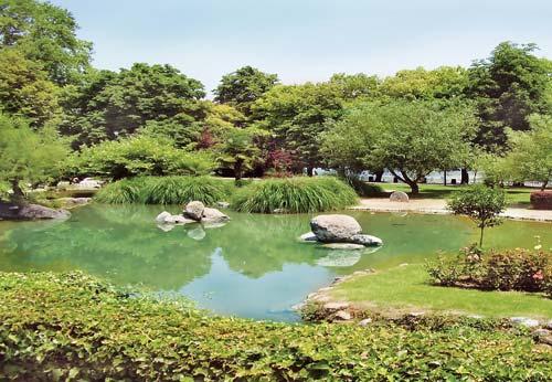 Υδρόκηπος: το νερό στον κήπο