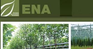 Δράση του E.N.A. για το βακτήριο Xylella fastidiosa