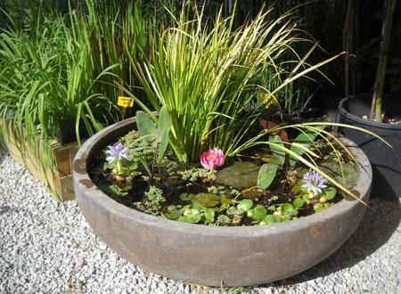 Λίμνες και υδάτινοι κήποι