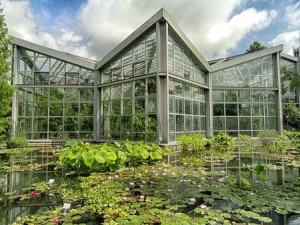 Φτιάχνω έναν υδρόκηπο στον κήπο