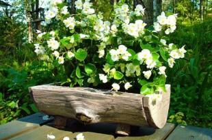ξύλινη ζαρντινιέρα