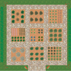 Τετράγωνος λαχανόκηπος