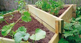 Λαχανόκηπος στον κήπο