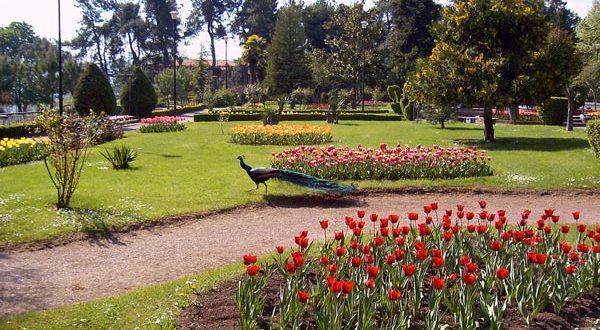 Πάρκο Νάουσας