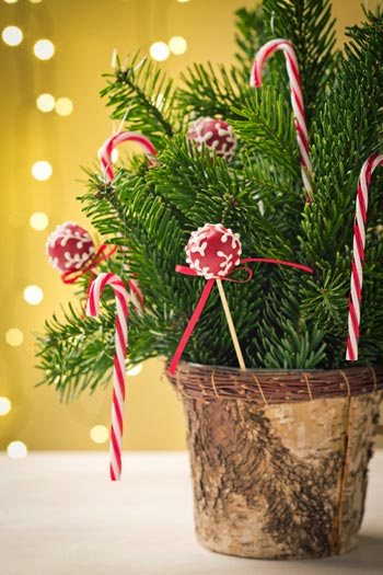 Χριστουγεννιάτικη διακόσμηση με popcakes