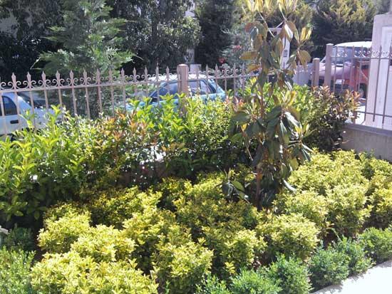 Μικροί κήποι στην πόλη