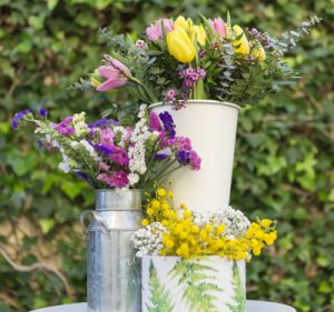 Λουλούδια της ανοιξιάτικης φύσης μοιάζουν μόλις κομμένα από τον κήπο!