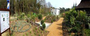 Ο ΕΛΛΗΝΙΚΟΣ ΚΗΠΟΣ στην FLORIADE 2012, σε σχεδιασμό και κατασκευή από την ΣΥΝΕΡΓΕΙΑ –HELLENIC GARDEN TEAM , προωθητική ομάδα του ΕΣΕΦΥ.