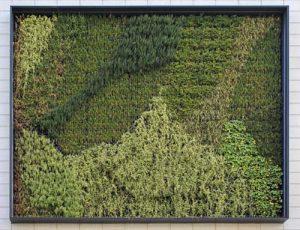 Κάθετοι κήποι