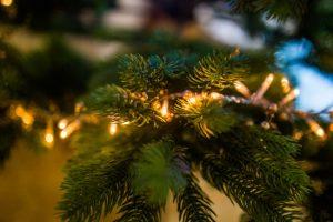 Χριστουγεννιάτικη διακόσμηση στον κήπο