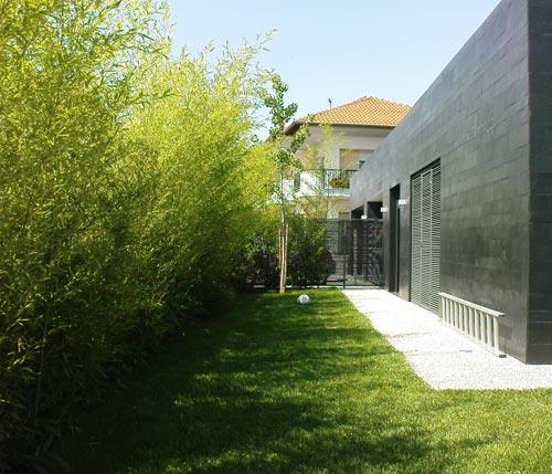 Φράχτες με φυτά για σύγχρονους κήπους