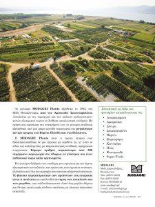 φυτώριοMODAGRI Plants