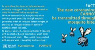Μπορούν τα κουνούπια να μεταδώσουν τον κορονοϊό;