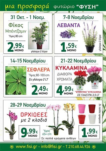 φυτώριο ΦΥΣΗ