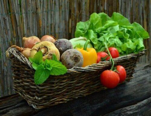Σπορά λαχανικών: ποσότητα σπόρων και αποστάσεις σποράς