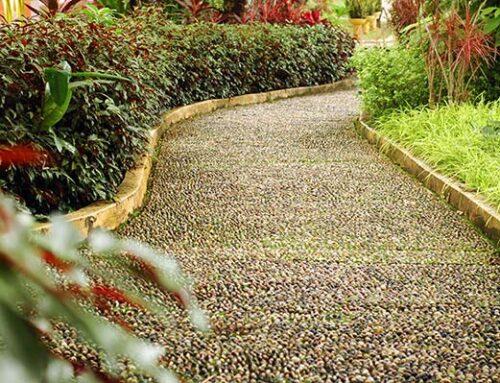 Διάδρομοι με πέτρα στον κήπο