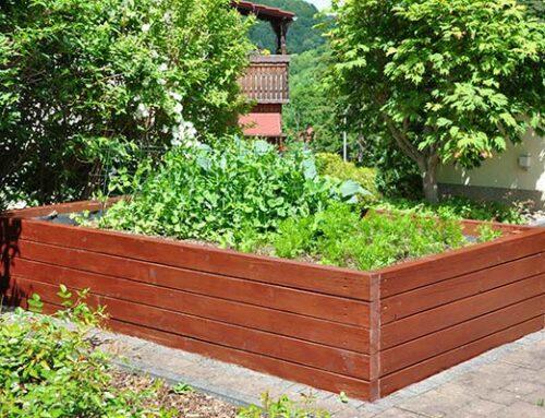 Φύτευση λαχανικών σε ξύλινα υπερυψωμένα παρτέρια