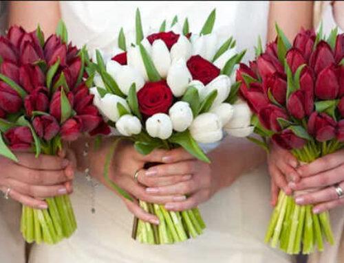 Τουλίπα, στο γάμο και στη διακόσμηση