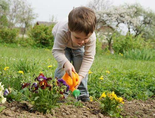 Φθινοπωρινές δραστηριότητες κηπουρικής για παιδιά