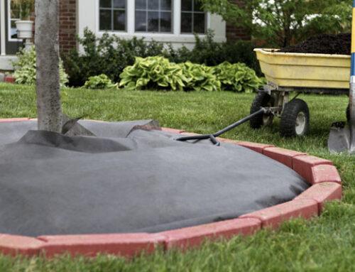 Δημιουργήστε εύκολα διαχωριστικό στον κήπο με τούβλο